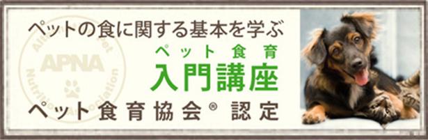 ペット食育協会® 入門講座